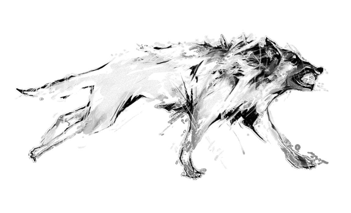 gallery1_wolfrennen