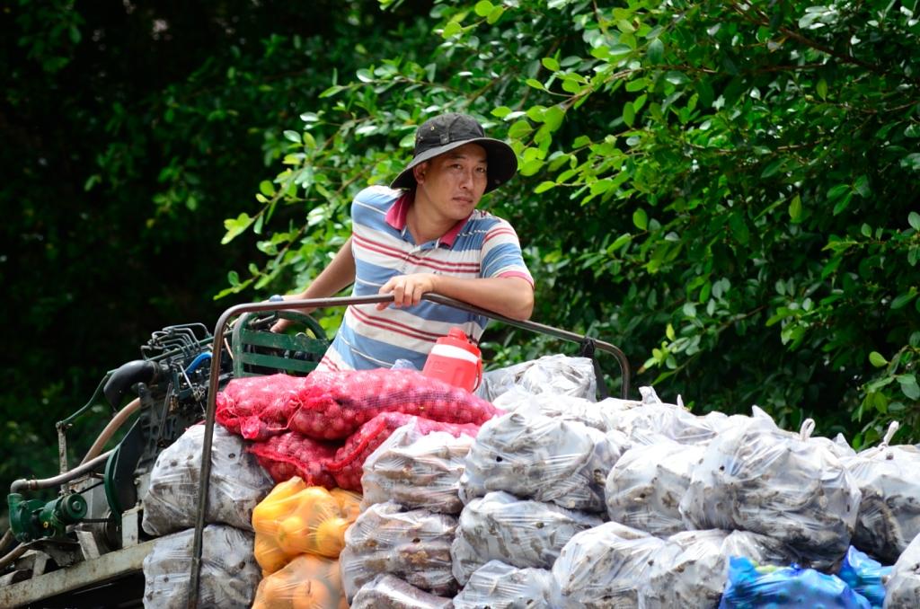 vietnam-2016-10-06-199